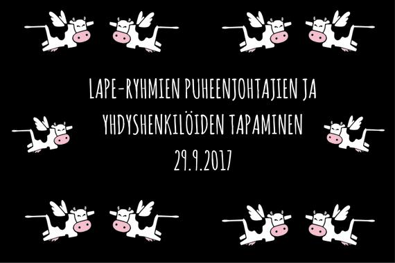 LAPE-ryhmien puheenjohtajien ja yhteyshenkilöiden tapaaminen 29.9.